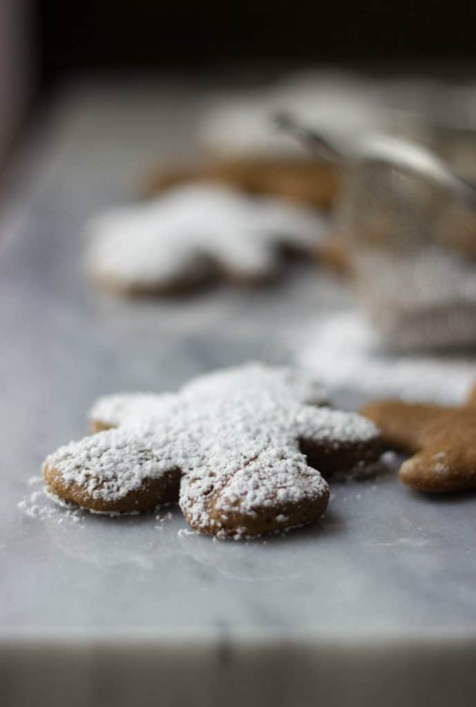 Close up of one Gingerbread Cut-Out Cookie with powdered sugar on top.