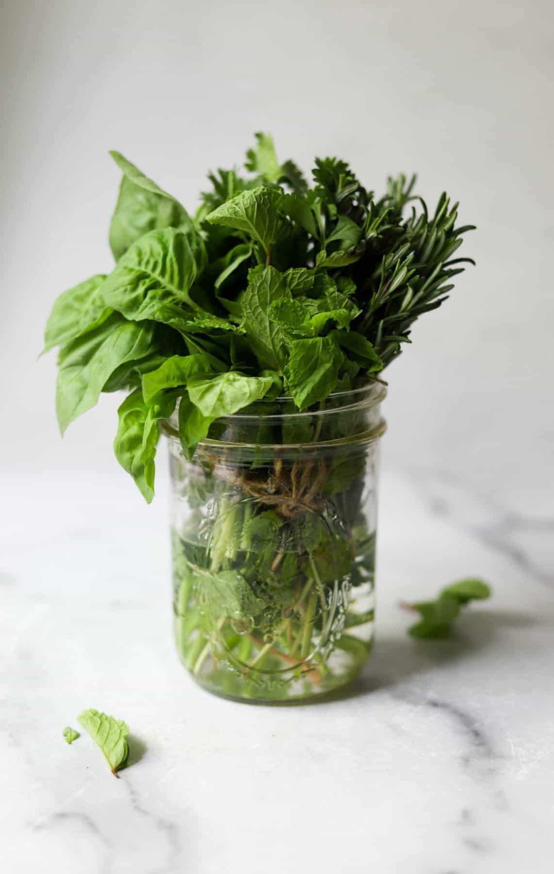 A bunch of fresh herbs in a clear mason jar