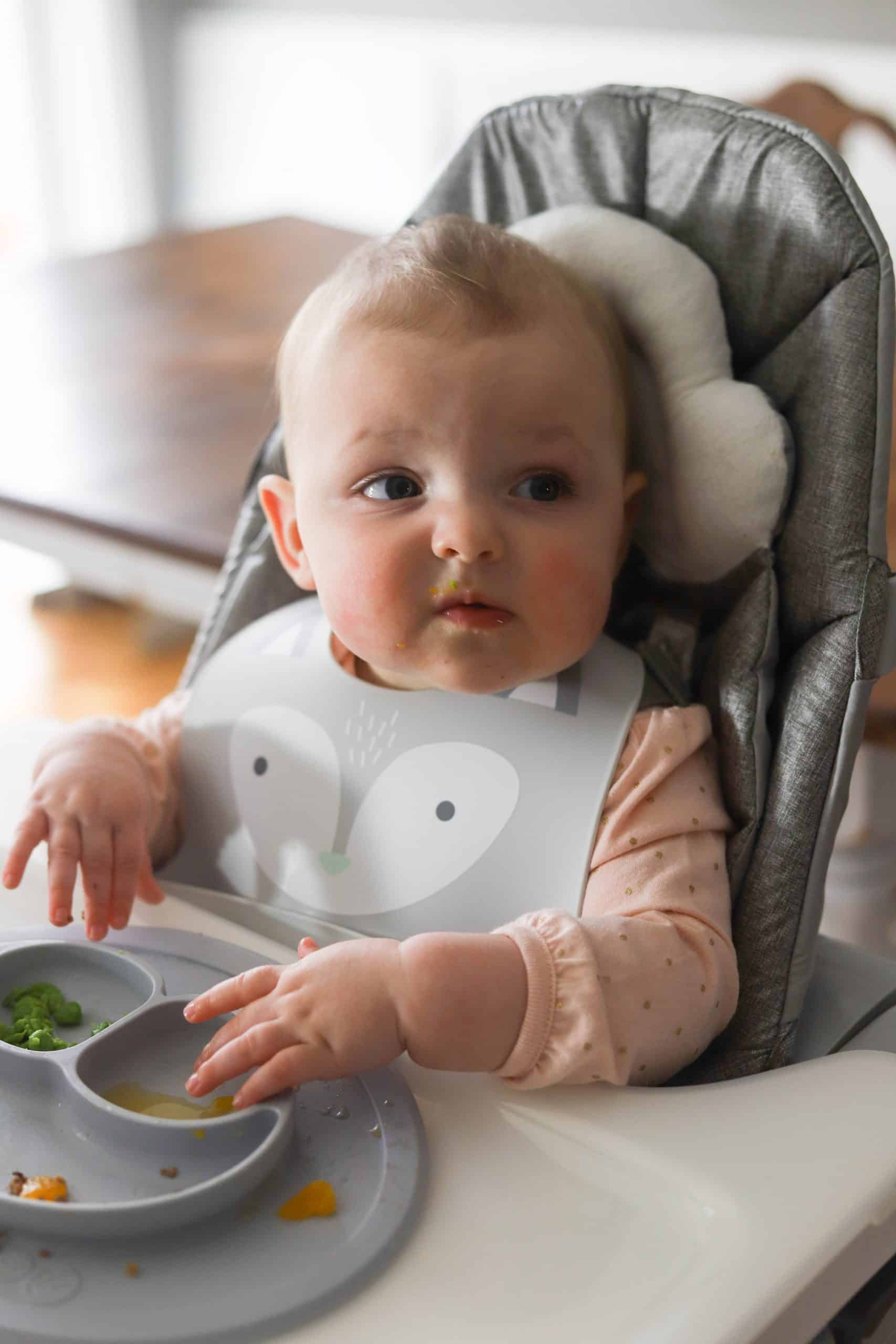 A baby with a bib in a high chair eating solids.